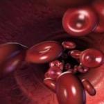 Βλαστοκύτταρα «αναγεννούν» αρτηρίες