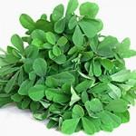 Το φυτό που μειώνει σάκχαρο και βάρος