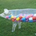 Παγκόσμιος κίνδυνος από την κατάχρηση αντιβιοτικών στα ζώα