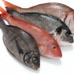 Τα ψάρια χαρίζουν μακροζωία