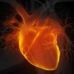 Γονιδιακή θεραπεία ενάντια στην καρδιακή ανεπάρκεια
