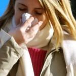gripi2